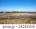 伊豆大島 表砂漠 28282936