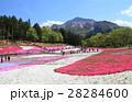 羊山公園芝桜の丘と武甲山 28284600