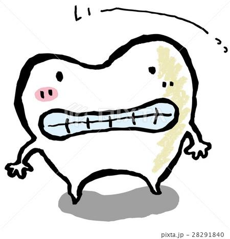 歯 28291840