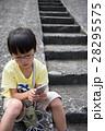 28295575