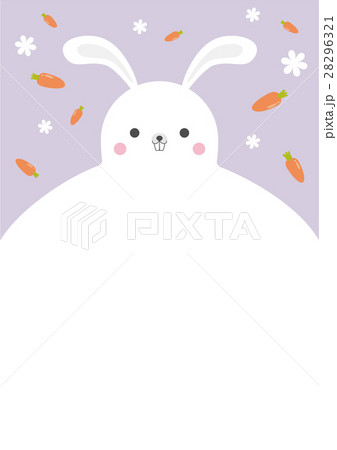 vector rabbit flyer template design a4 and rgb のイラスト素材
