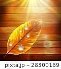 葉 しずく 滴のイラスト 28300169
