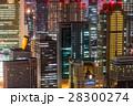 大阪 夜景 ビル群の写真 28300274