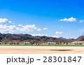 富士山を望む多摩川河川敷 28301847