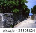 阿伝集落のサンゴの石垣 28303824