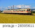 秋晴れの桜井線を行く105系 28305611