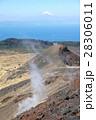 三原山 山 火山の写真 28306011