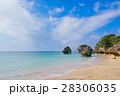 新原ビーチ 海 沖縄の写真 28306035