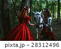 Medieval knight with lady 28312496