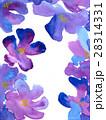 手描き水彩画で紫色のお花背景テクスチャー 28314331