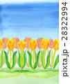 青空に黄色とオレンジ色チューリップ花壇の手描き水彩背景 28322994