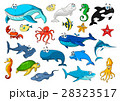 Marine animal isolated cartoon icon set 28323517