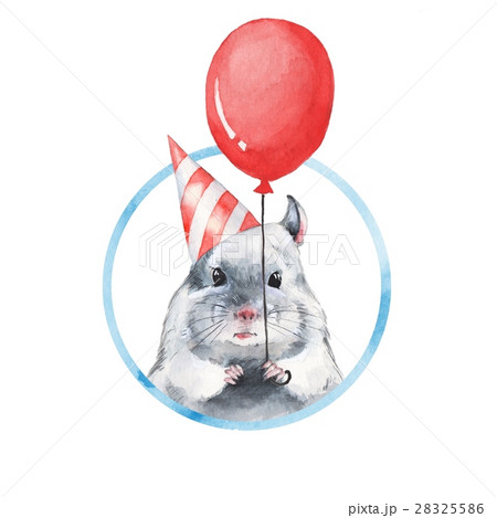Chinchilla 1. Watercolor birthday card 28325586