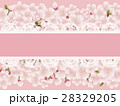桜の花とレースのメッセージカード 28329205