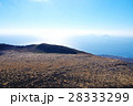 伊豆大島 表砂漠 大島の写真 28333299