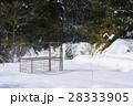 イノシシ対策 冬 28333905