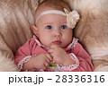 ベビー 赤ちゃん 赤ん坊の写真 28336316