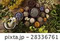 代わり フラワー 花の写真 28336761