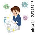 手を洗う男性 28336948