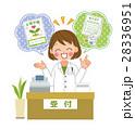 薬剤師さん 28336951