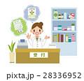 薬剤師さん 28336952