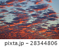 Background of the fire sky 28344806