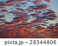 夕日 夕焼 日没の写真 28344806