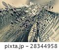 アート 芸術 クロームのイラスト 28344958
