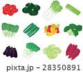 野菜 セット 農作物のイラスト 28350891