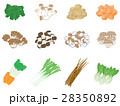 野菜セット <ひとまとまりの野菜> 28350892