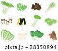 野菜セット <ひとまとまりの野菜> 28350894