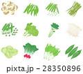 野菜セット <ひとまとまりの野菜> 28350896
