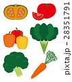 野菜 緑黄色野菜 カラフルのイラスト 28351791