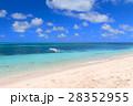 オーストラリアグリーン島 28352955