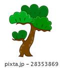 盆栽 樹木 樹のイラスト 28353869