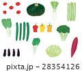 野菜 セット 農作物のイラスト 28354126