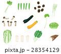 野菜セット <ばらばらの野菜>  28354129