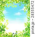 新緑 フレーム 葉のイラスト 28355472