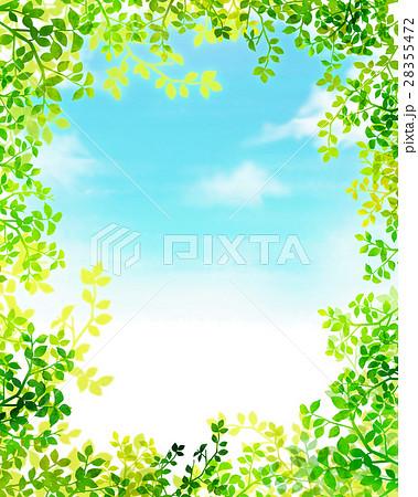 木漏れ日 テクスチャー 背景素材 28355472