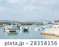 大島 風景 28358156