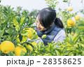 農業女子 イメージ 28358625