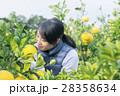 農業女子 イメージ 28358634