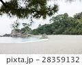 桂浜 28359132