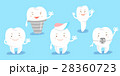 tooth show ok to you 28360723