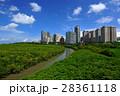 台湾 景色 風景の写真 28361118