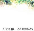 新緑 葉 枝葉のイラスト 28366025