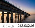 りんくう公園 海 夕暮れの写真 28368286