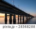 りんくう公園 海 夕暮れの写真 28368288