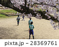 イメージ素材 桜の下でサッカーをする子供たち 28369761