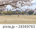 イメージ素材 桜の下でサッカーをする子供たち 28369763